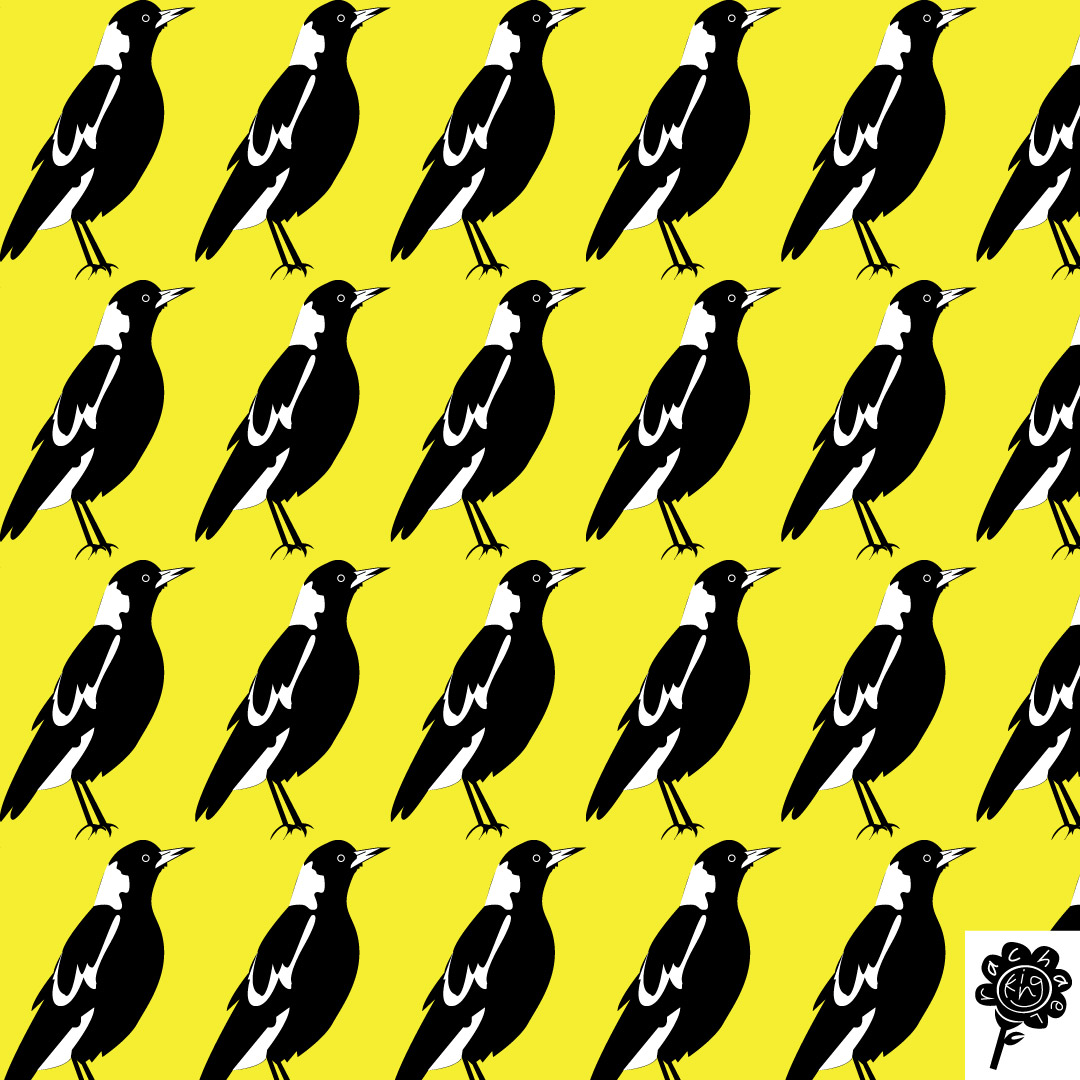 magpie-one-way-large-yellow-insta